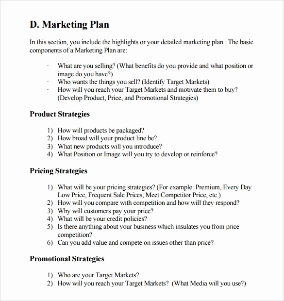Business Plan Template Examples Inspirational Sample Marketing Business Plan Template 13 Free