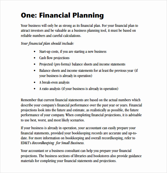 Business Plan Template Examples Luxury 6 Sample Financial Business Plan Templates