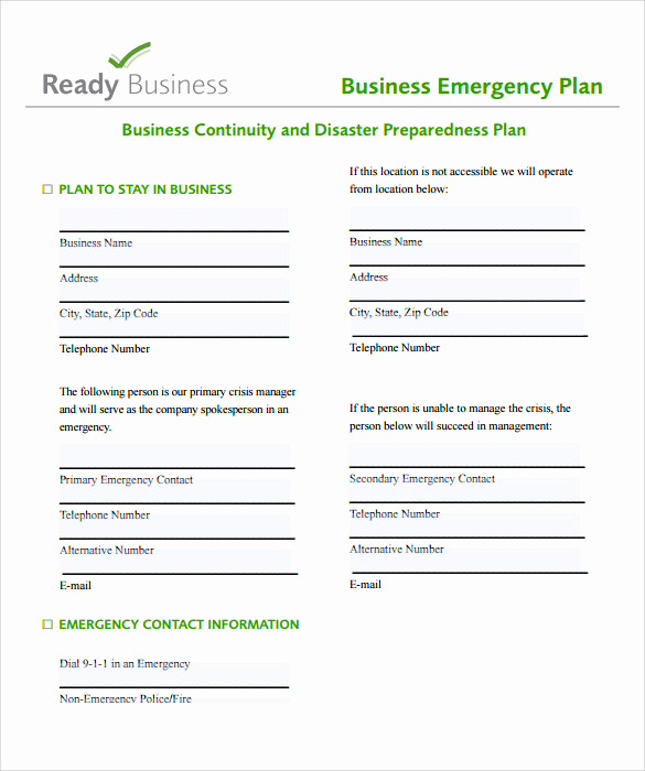 Business Plan Template Examples Unique Sample Business Action Plan – 13 Examples In Word Pdf format