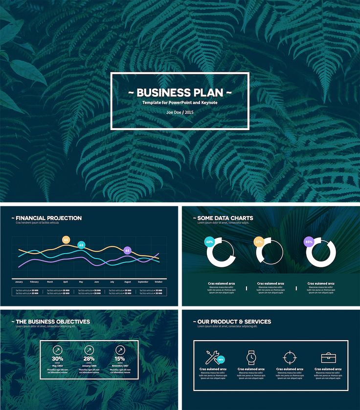 Business Plan Template Powerpoint Awesome Best 25 Business Plan Presentation Ideas On Pinterest