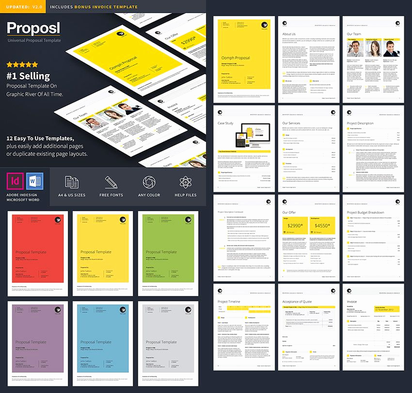 Business Proposal Template Word Awesome Professional Business Proposal Template Design