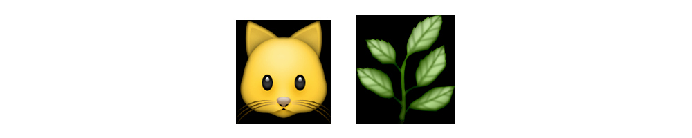 Cat Emoji Copy and Paste Lovely Catnip Emoji Meanings