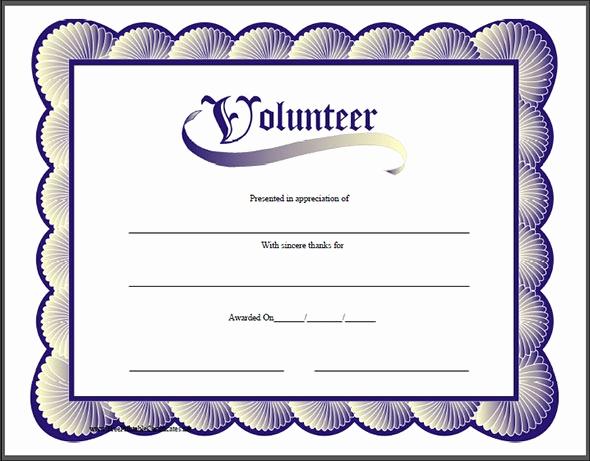 Certificate Of Appreciation Template Word Lovely Certificate Of Appreciation Templates 35 Download In