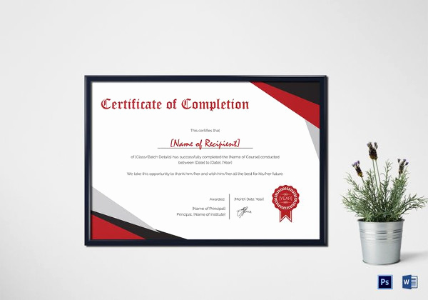 Certificate Of Completion Template Word Fresh 27 Pletion Certificate Examples Psd Pdf Word
