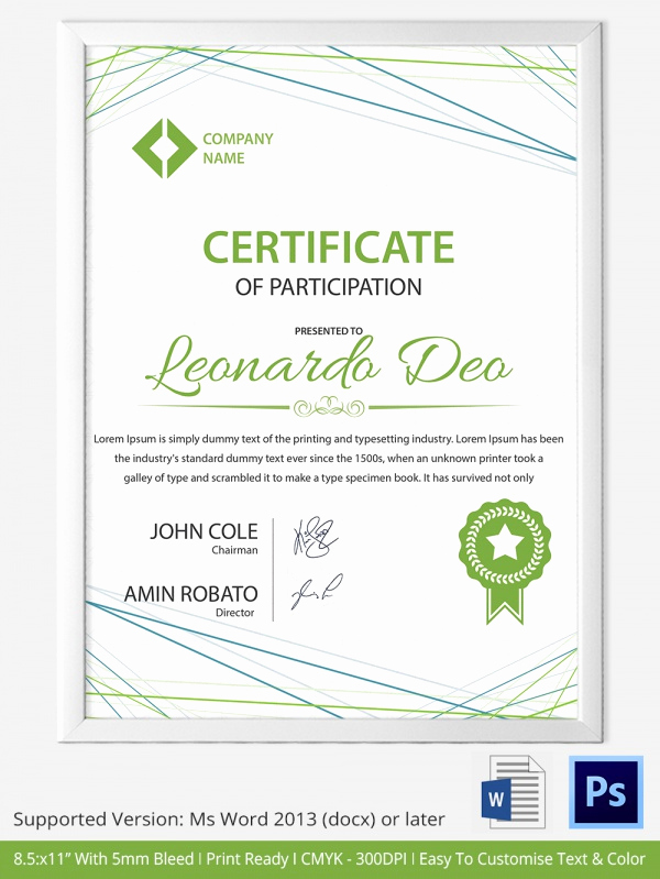 Certificate Of Participation Template Awesome School Certificate Templates 22 Download Documents In