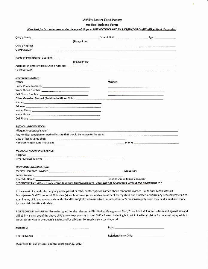 Child Medical Consent form Pdf Beautiful Lamb S Basket