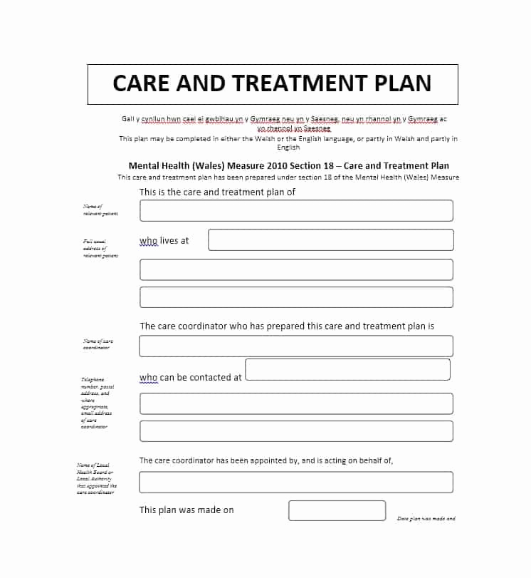 Counseling Treatment Plan Template Pdf Awesome 35 Treatment Plan Templates Mental Dental Chiropractic