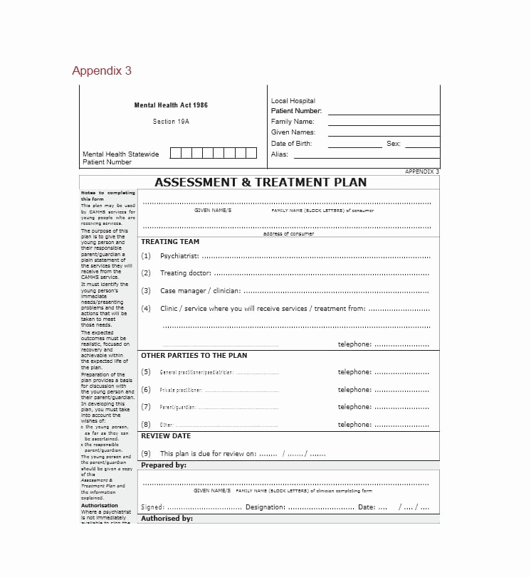 Counseling Treatment Plan Template Pdf Unique 35 Treatment Plan Templates Mental Dental Chiropractic
