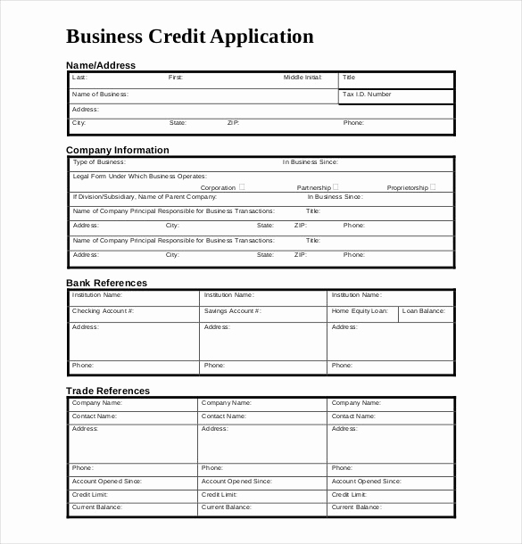 Credit Application form Pdf Beautiful Credit Application Template 33 Examples In Pdf Word