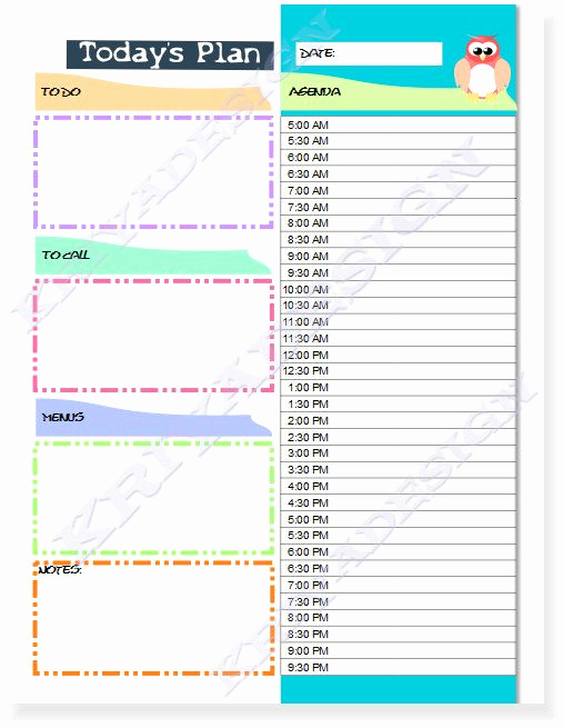 Daily Planner Printable Pdf Luxury Day Planner organizer Pdf Printable Daily Planner by