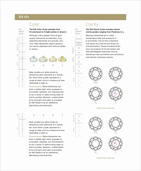 Diamond Color and Clarity Scale Fresh Sample Diamond Grading Chart Template 6 Free Documents