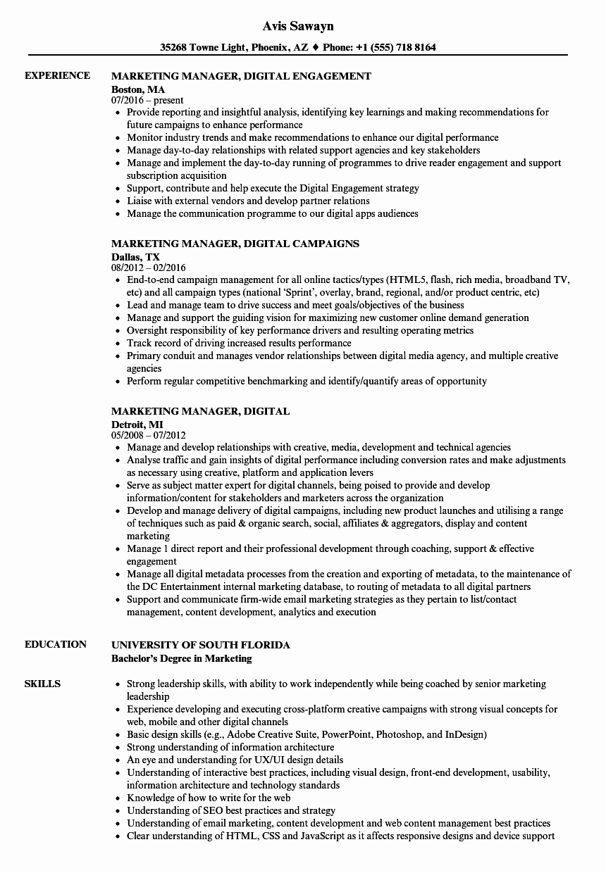 Digital Marketing Resume Sample Fresh Marketing Manager Digital Resume Samples