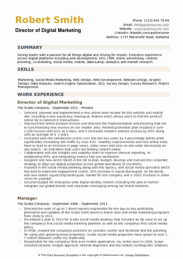 Digital Marketing Resume Sample New Director Of Digital Marketing Resume Samples