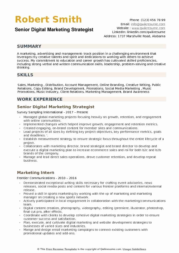 Digital Marketing Resume Sample New where Can I Find Best Resume format for Digital Marketing