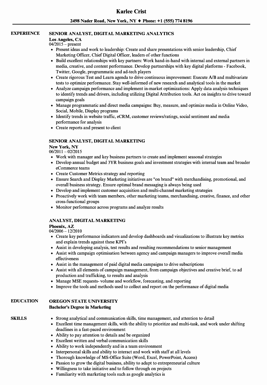 Digital Marketing Resume Sample Unique Analyst Digital Marketing Resume Samples
