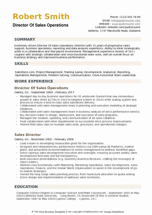 Director Of Operations Resume Luxury Director Of Sales Operations Resume Samples