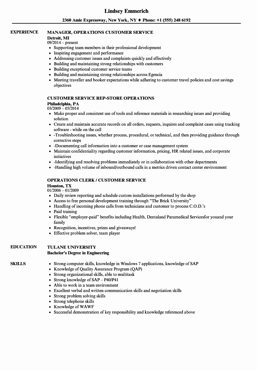 Director Of Operations Resume New Director Operations Resume
