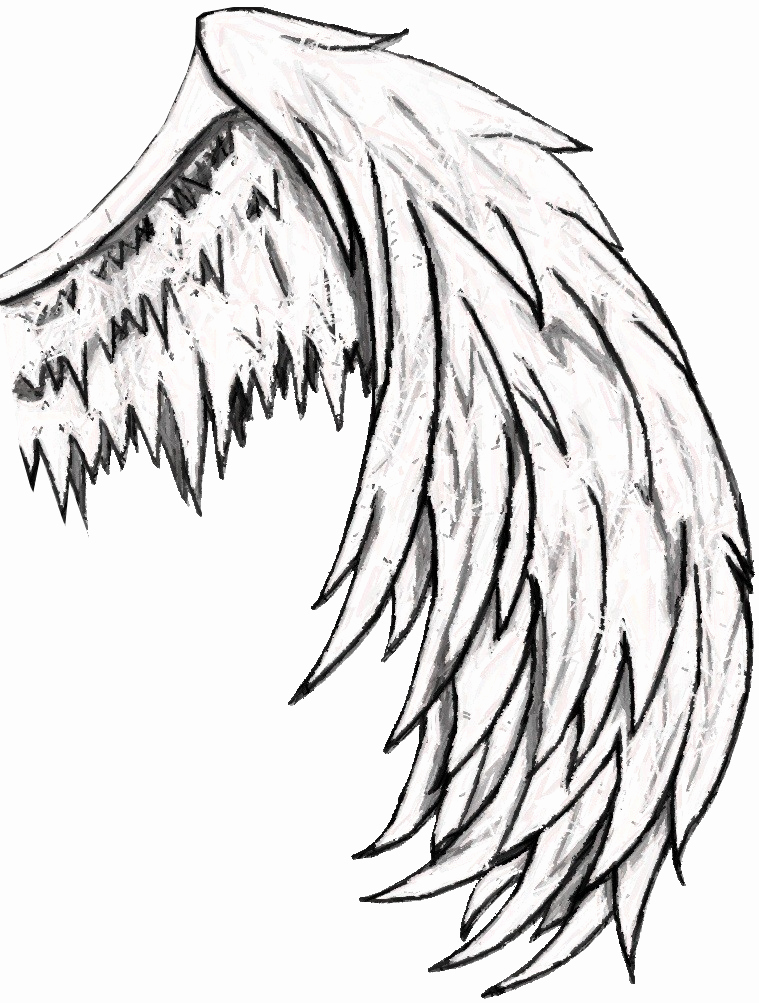 Drawing Of Angels Wings Best Of Free Simple Angel Wings Drawing Download Free Clip Art