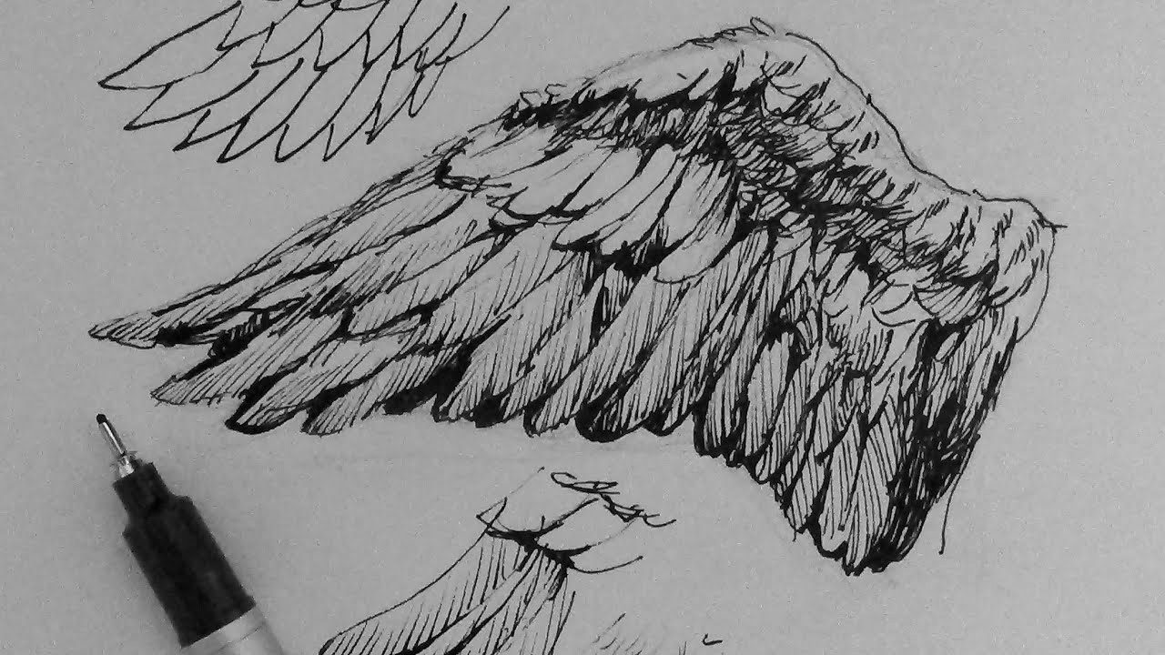 Drawing Of Angels Wings Best Of Pen & Ink Drawing Tutorials