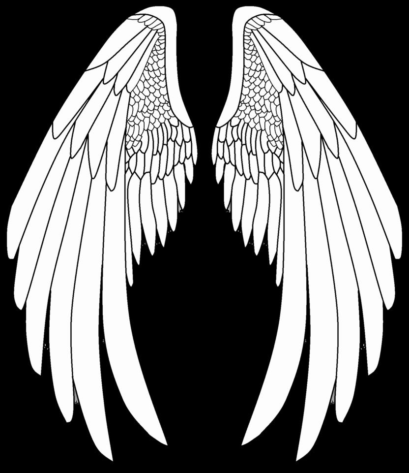 Drawing Of Angels Wings Elegant Pin Szerzője Kalnaiorsolya Közzétéve Itt Rajzok
