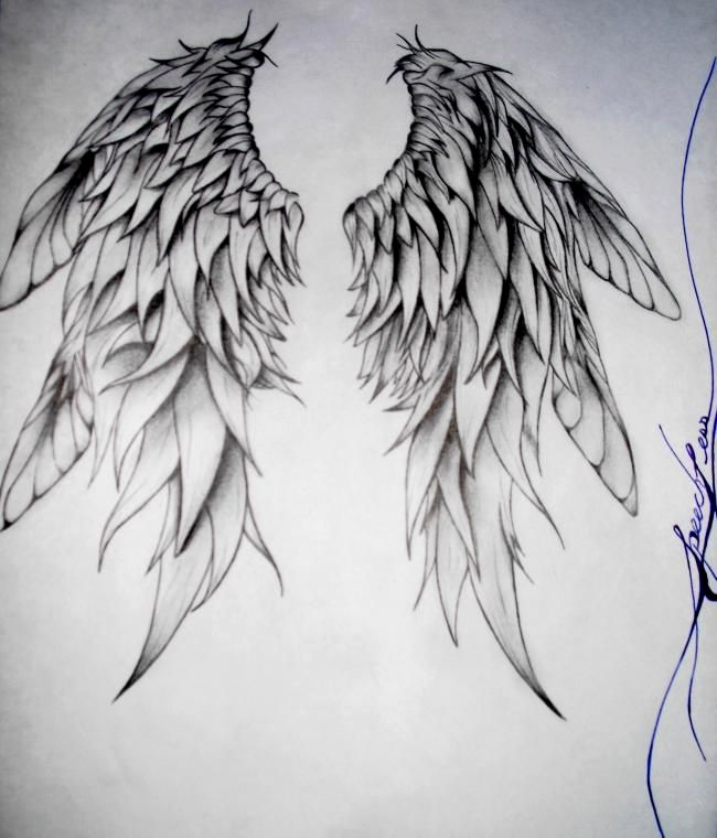 Drawing Of Angels Wings Elegant the Shape and Detail Of these Wings Captivated Me because