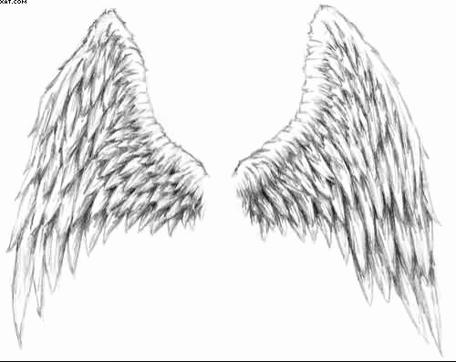Drawing Of Angels Wings Lovely Pencil Drawings Angel Wings Drawings In Pencil