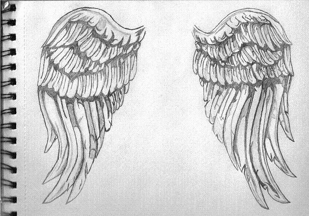 Drawing Of Angels Wings Luxury Angel Wings by Xemnas26 On Deviantart