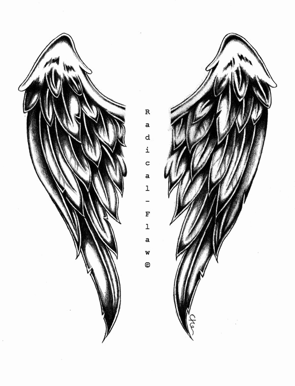 Drawing Of Angels Wings Unique Drawn Wings Angel Wing Pencil and In Color Drawn Wings