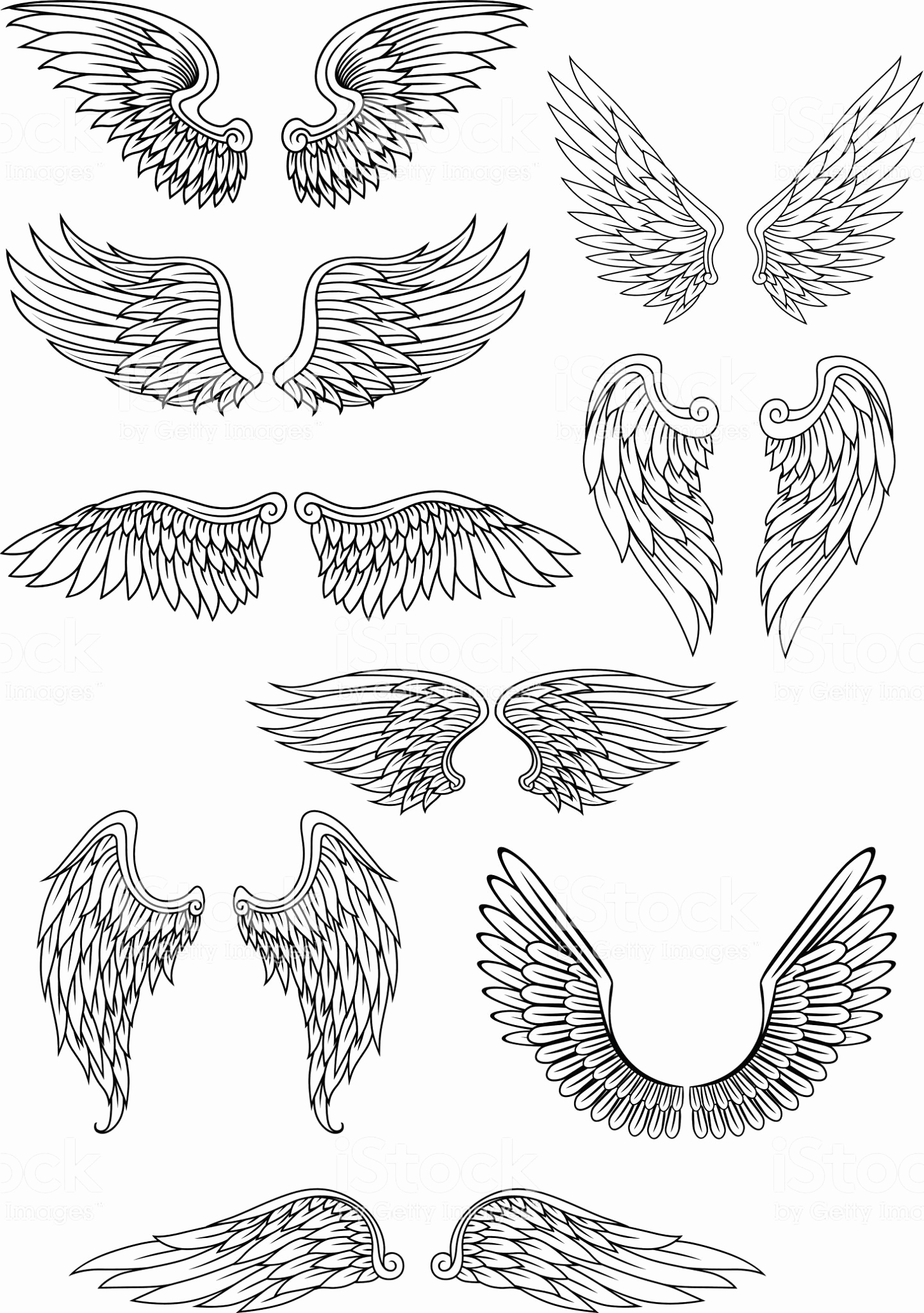 Drawings Of Angels Wings Lovely Heraldic Bird or Angel Wings Set isolated On White for