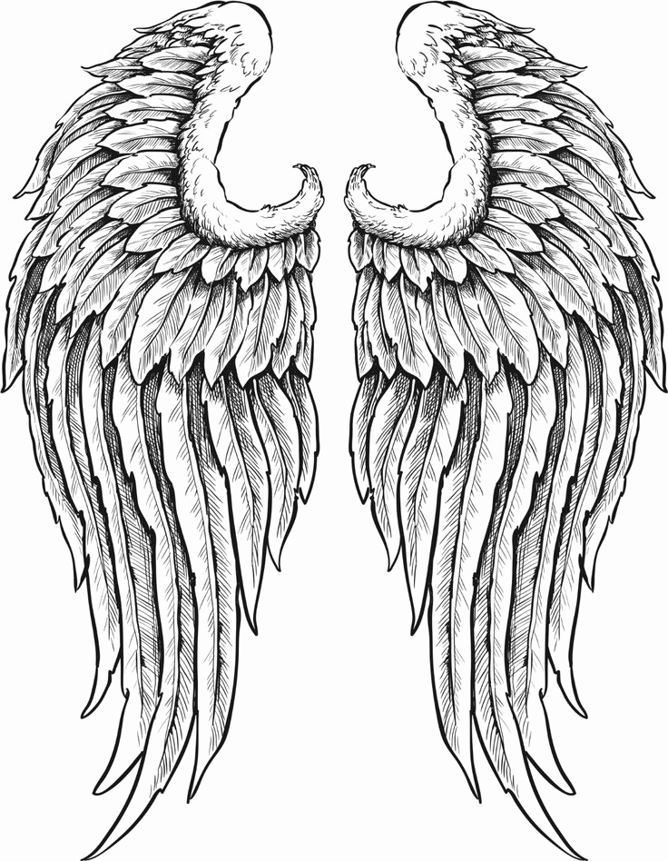 Drawings Of Angels Wings New Black and White Angel Wings Google Search