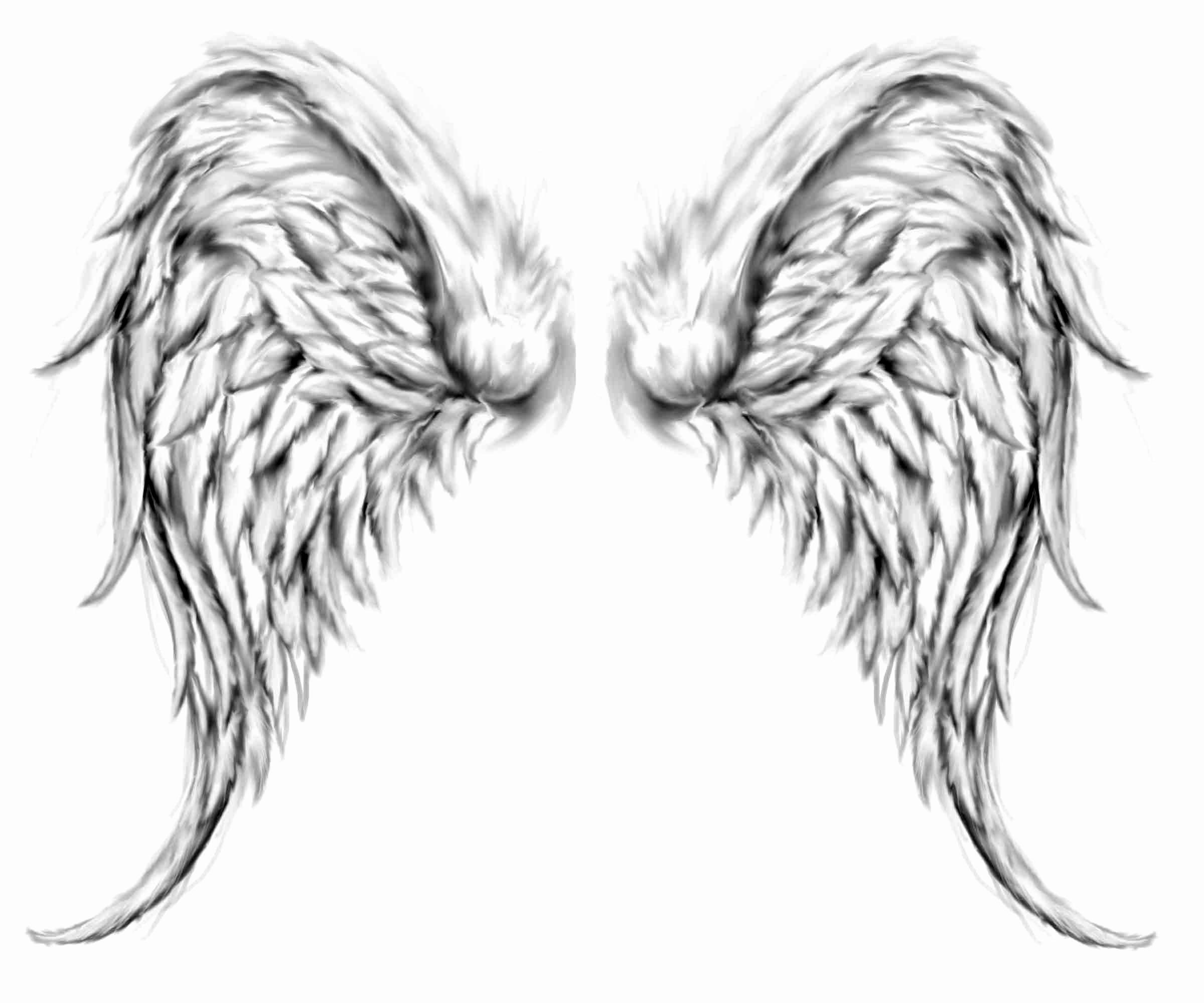 Drawings Of Angels Wings New Tattoos Angels Wings Cool Tattoos Bonbaden