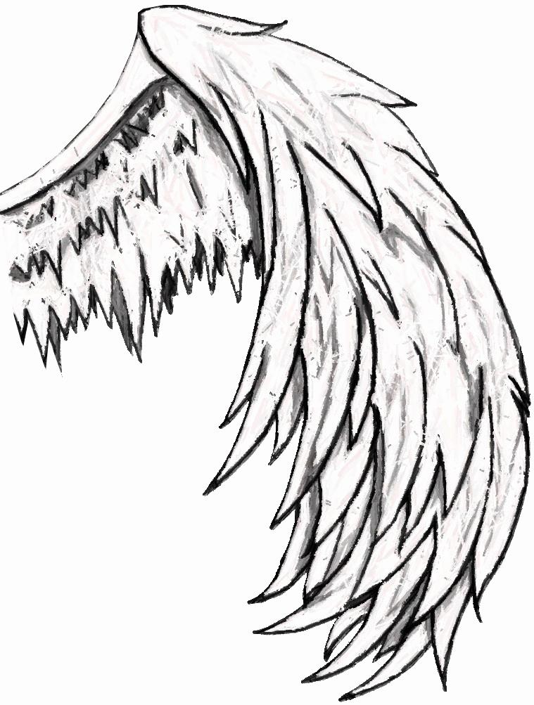 Drawings Of Angels Wings Unique Free Simple Angel Wings Drawing Download Free Clip Art