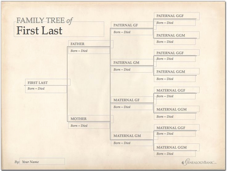 Editable Family Tree Template Beautiful 228 Best Images About Genealogy Charts forms and