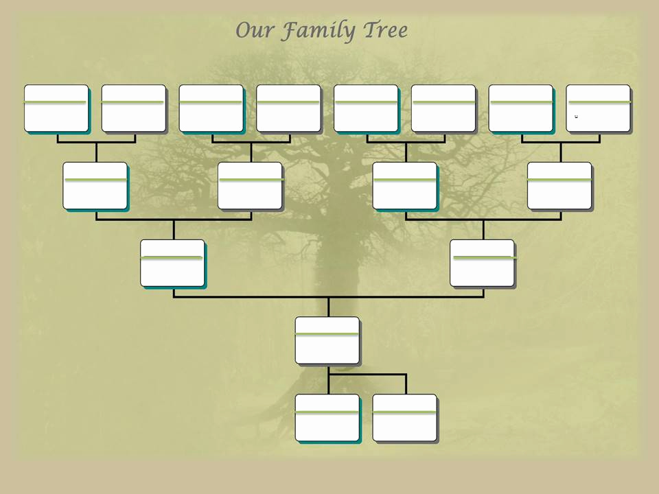 Editable Family Tree Template Beautiful Family Tree Project Template