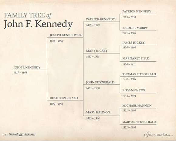 Editable Family Tree Template Fresh Family Tree Template 55 Download Free Documents In Pdf