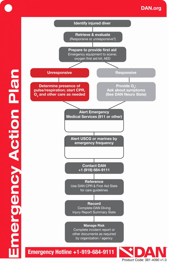 Emergency Action Plans Examples Best Of Dan Emergency Action Plan Template – Try Diving