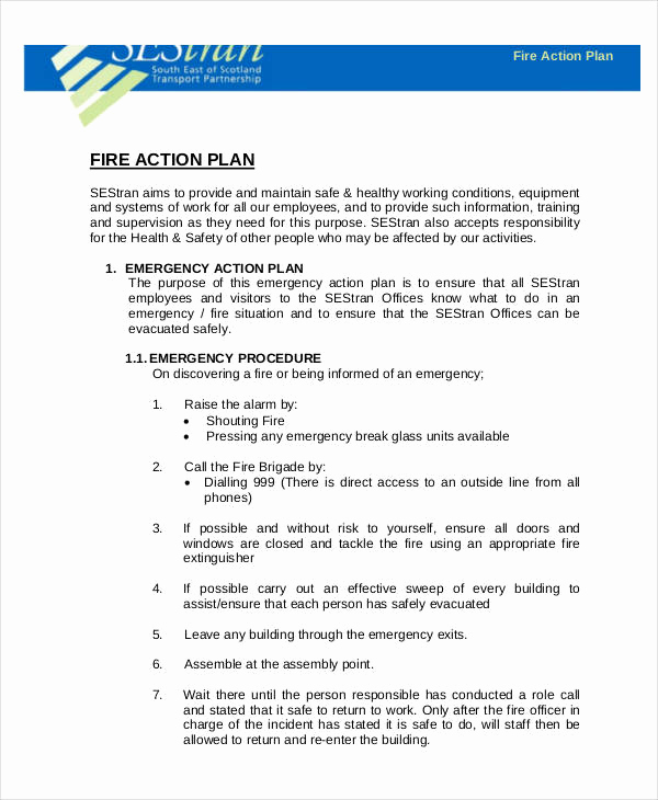 Emergency Action Plans Examples Fresh 54 Action Plan Examples Pdf Word