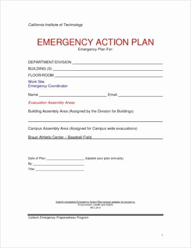 Emergency Action Plans Examples Luxury 10 Printable Emergency Action Plan Examples Pdf