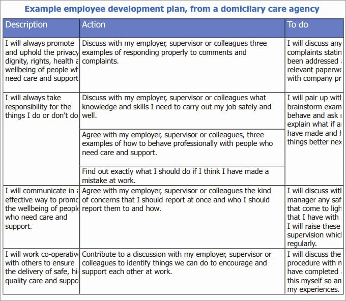 Employee Development Plan Examples Lovely Employee Development Plan Template
