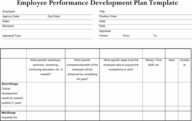 Employee Development Plan Template Luxury 6 Sample Performance Development Plan Templates to