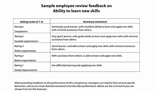 Employee Performance Evaluation Samples Awesome Sample Performance Review Ments & Appraisal Feedback