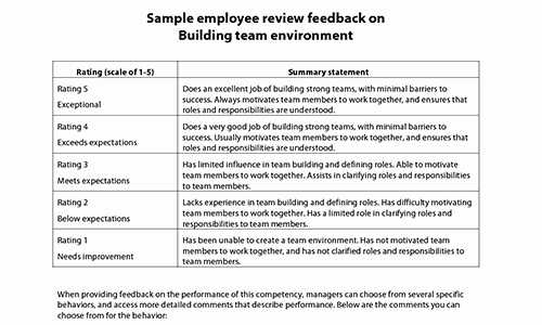 Employee Performance Evaluation Samples New Sample Performance Review Ments & Appraisal Feedback