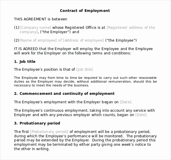 Employment Contract Template Word Inspirational 10 Microsoft Word Contract Templates Free Download