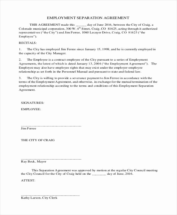 sample employment agreement form
