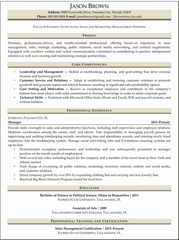 Entry Level Marketing Resume Lovely Sales Resume Examples Resume Professional Writers