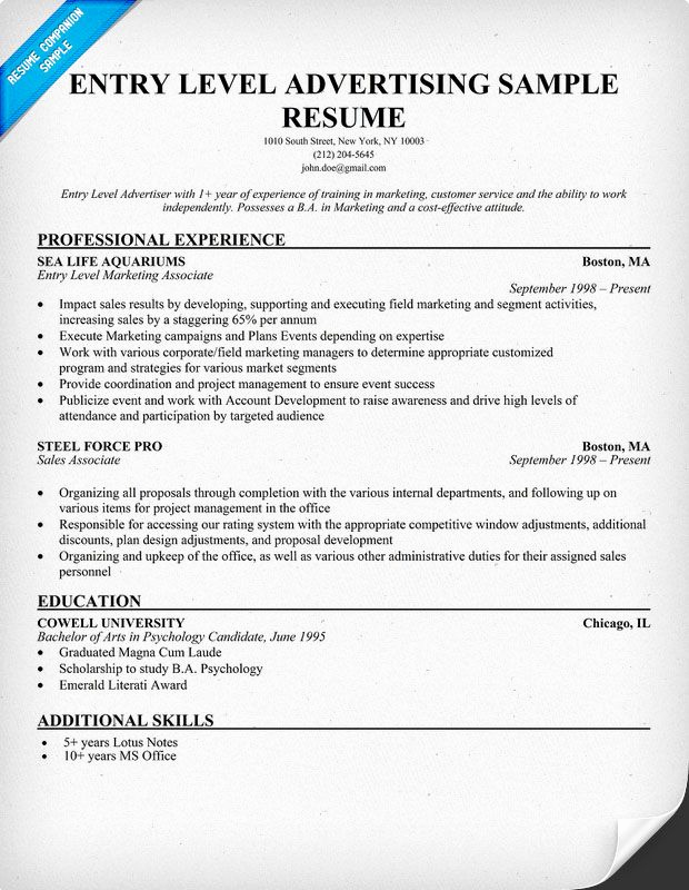 Entry Level Marketing Resume Unique Free Entry Level Advertising Resume Example