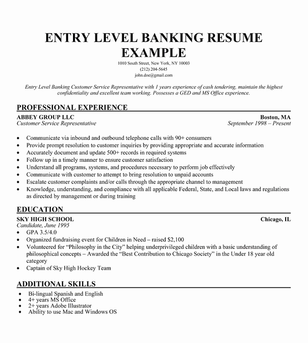 Entry Level Resume No Experience Beautiful 15 Entry Level It Resume with No Experience