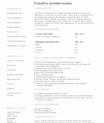 Entry Level Resume No Experience Lovely 15 Entry Level It Resume No Experience