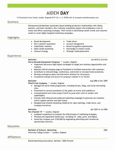 Entry Level Web Developer Resume Best Of Strategizing A Marketing Based Resume