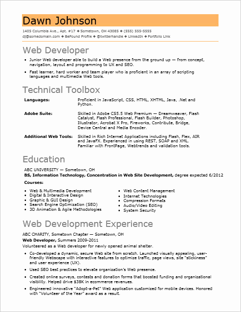 Entry Level Web Developer Resume Inspirational Sample Resume for An Entry Level It Developer